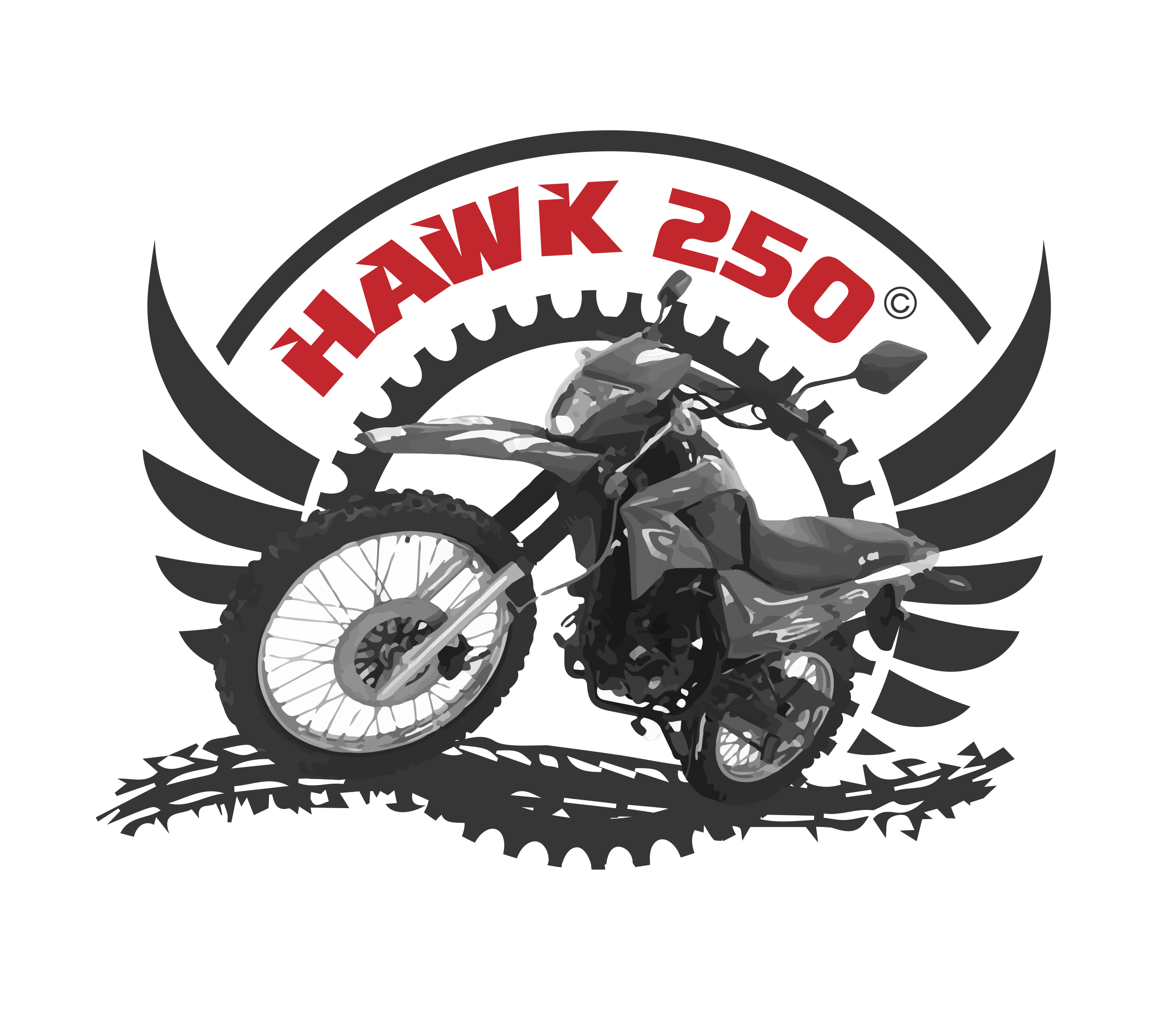 Hawk 250 RPS