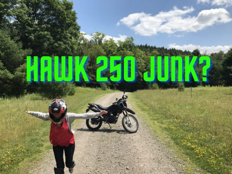 Is the Hawk 250 Worth Buying?
